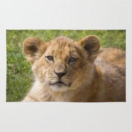 Baby Lion Cub Rug