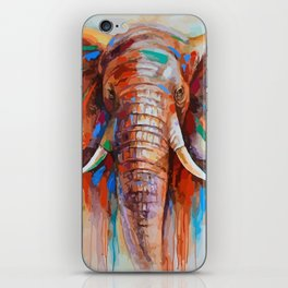 A COLORFUL ELEPHANT iPhone Skin