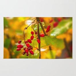 Autumn drops Rug