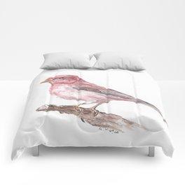 Purple Finch Comforters