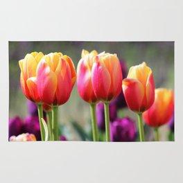 Tulips Aflame Rug