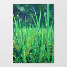 Grasslands in the Himalayan Foothills Canvas Print