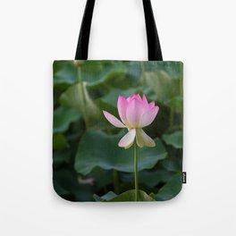water lily #society6 #decor #buyart Tote Bag