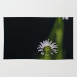 Flowers by night Rug