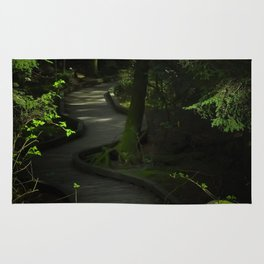 Path of Shadows Rug