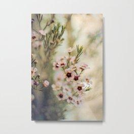 Breath of Spring Metal Print