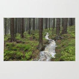 Water always flows downhill Rug