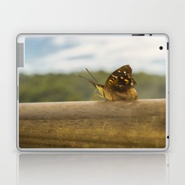 Butterfly against Blur Background at Iguazu Park Laptop & iPad Skin