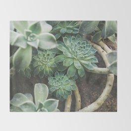 Botanical Gardens - Succulent #625 Throw Blanket
