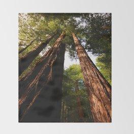 Redwood Tree Tops Throw Blanket