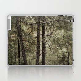 An Himachal Backyard Laptop & iPad Skin