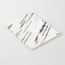 Birch-bark Notebook