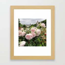 Paris Hidden Garden Roses Framed Art Print