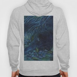 disappear Hoody