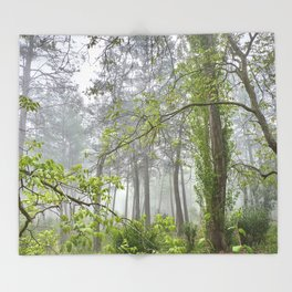 Foggy morning into the dream forest Throw Blanket
