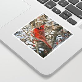 Winter Cardinal by Teresa Thompson Sticker