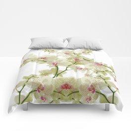 Orchidee fantasy Comforters