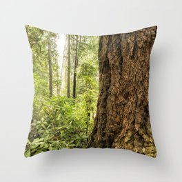 Been Around a Long Long Time Throw Pillow
