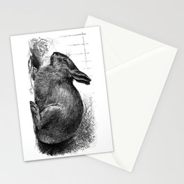 Garden Bunny Stationery Cards