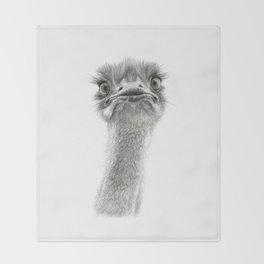 Cute Ostrich SK053 Throw Blanket