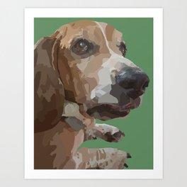 George the Basset Hound Art Print
