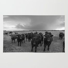 Hanging Out - Black and White Photo of Cows in Kansas Rug