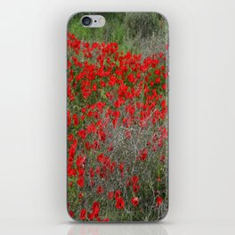 Beautiful Red Wild Anemone Flowers In A Spring Field  iPhone Skin