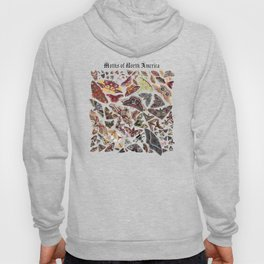 Moths of North America Hoody