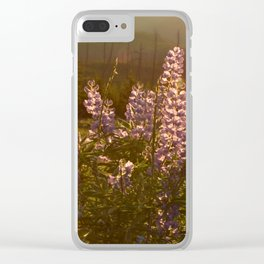 sunset lupin Clear iPhone Case