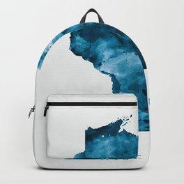 Wisconsin Backpack