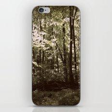 Something Dark Lies Within iPhone & iPod Skin
