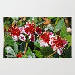 Beautiful Pineapple Guava / Guavasteen Flowers Rug