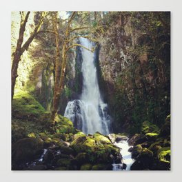 North Fork Falls Canvas Print