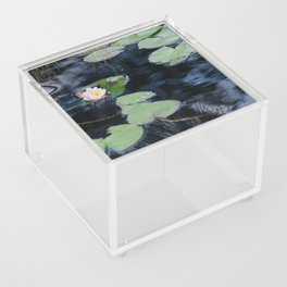 Soft Shade by Teresa Thompson Acrylic Box