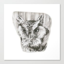 Owl Stare by annmariescreations Canvas Print