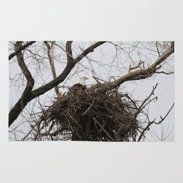 Bald Eagle on a Nest Rug