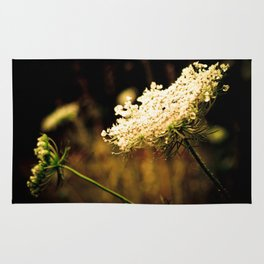 d.a.r.k. Queen Anne's Lace Rug