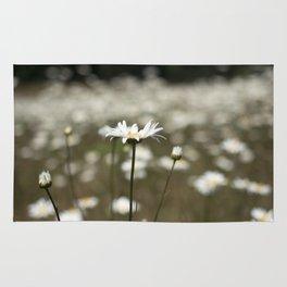 Wildflowers in an Oregon Field Rug