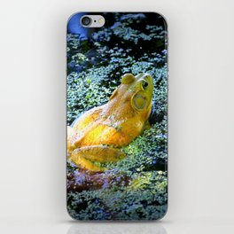 Bullfrog In The Swamp iPhone Skin
