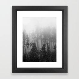 Foggy Forest Chinook Washington Grey Photography Print Misty Northwest Framed Art Print