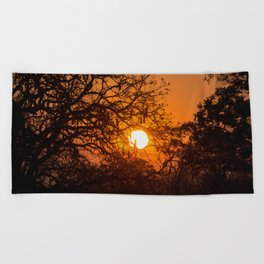 Sultry sun setting behind the sausage tree Beach Towel