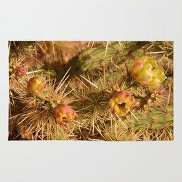 Cacti in Bloom Rug
