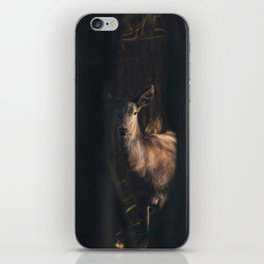 Mystical red deer in dark forest lit by sunlight. iPhone Skin