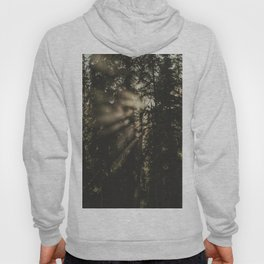 Sunset in the Woods - Nature Photography Hoody