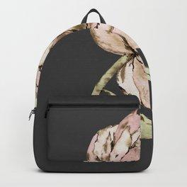 Ottawa dark Backpack
