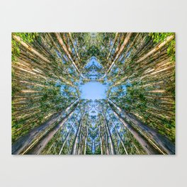 Face in the Trees Canvas Print