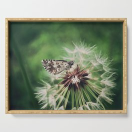 The Skipper Butterfly. Serving Tray