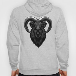 Wolf in sheep's clothes Hoody