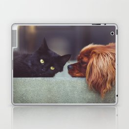 CAT - DOG - LYING - DOWN - ANIMALS - FRIENDS - PHOTOGRAPHY Laptop & iPad Skin