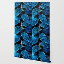 Peacock Blue Leaves Nature Background #decor #society6 #buyart Wallpaper